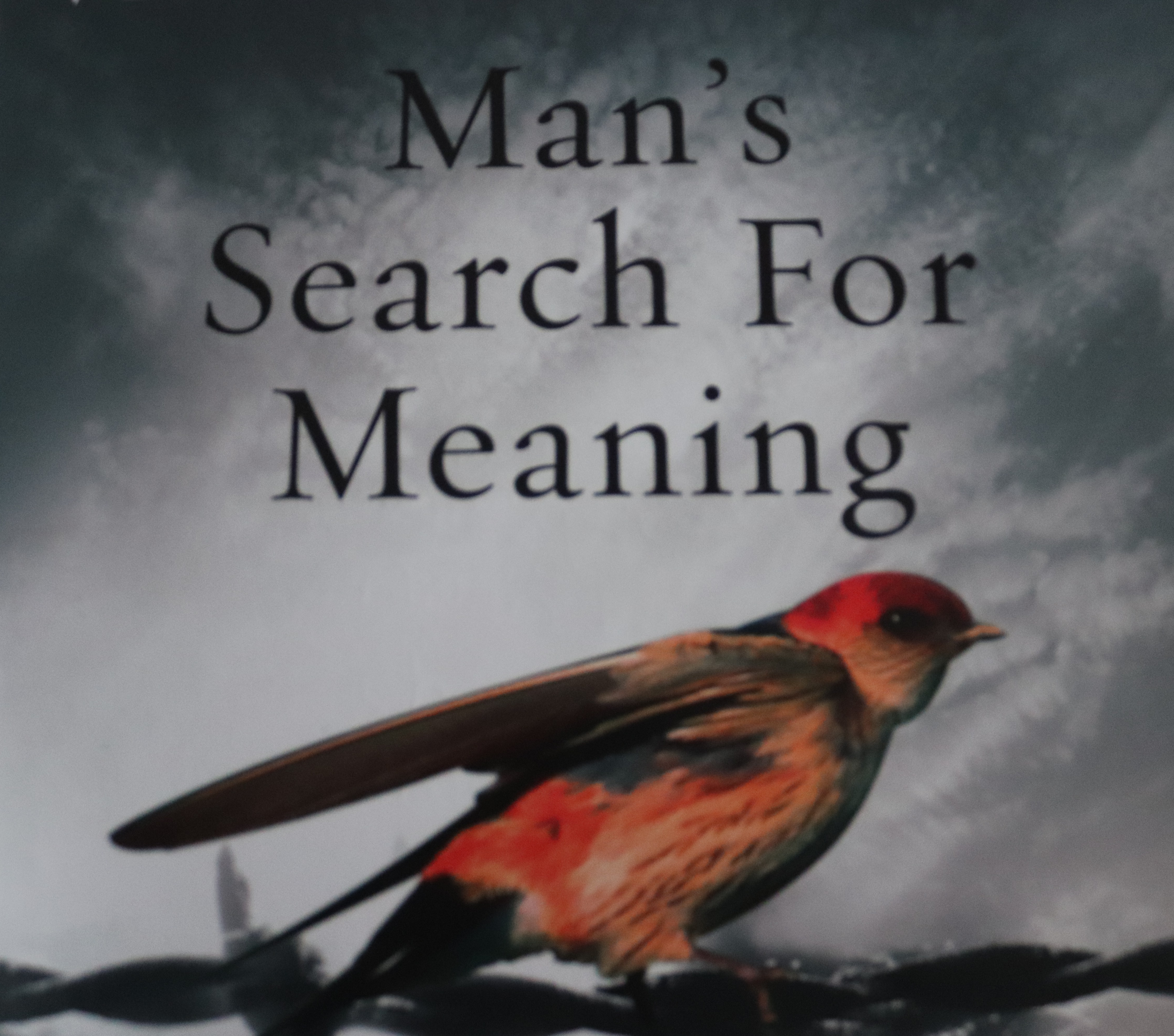 Book Review - Man's Search For Meaning by Viktor E. Frankl